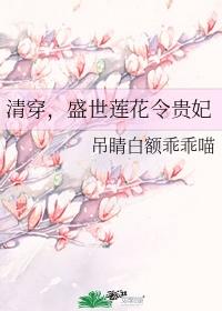 清穿,盛世莲花令贵妃