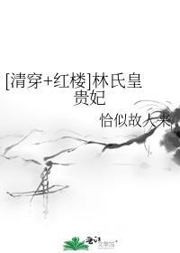 [清穿+红楼]林氏皇贵妃